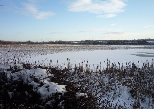 Baron's Haugh in winter