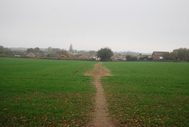 Footpath crossing a field to Herne
