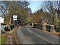 SJ7785 : Ashley Bridge by David Dixon