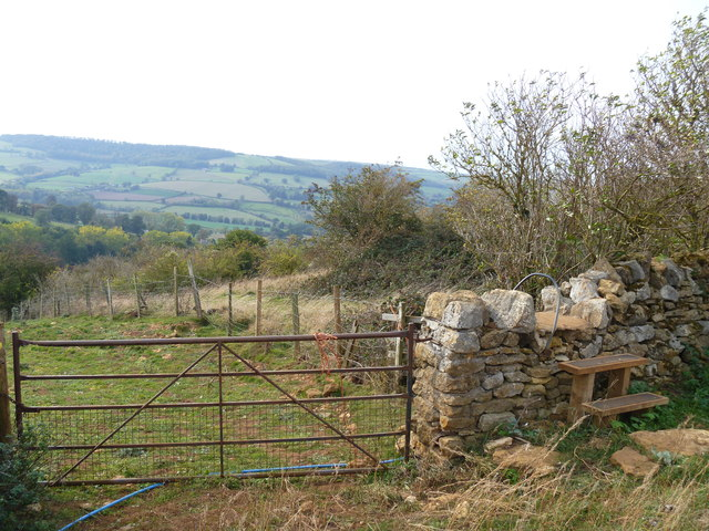 On Salter's Hill