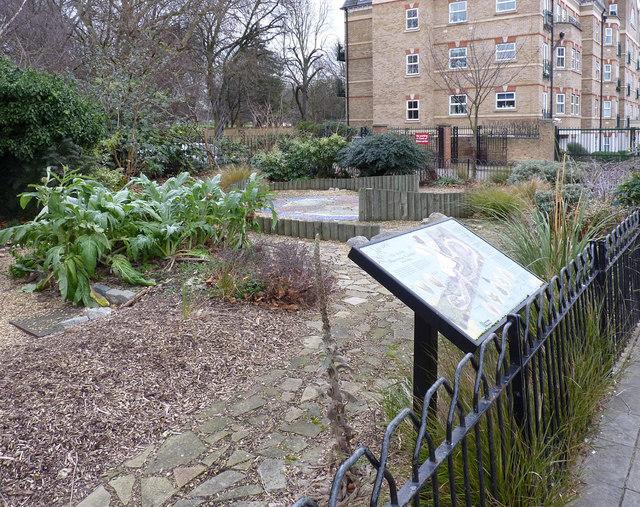 Acton Waterwise Garden