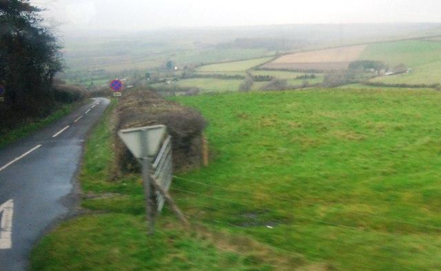 Hedge by Litton Lane