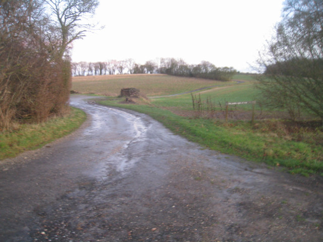 Track to Lilley's Copse