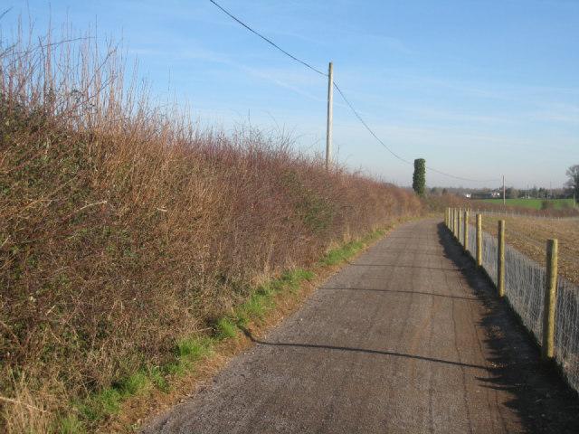 Cyclepath to Basingstoke