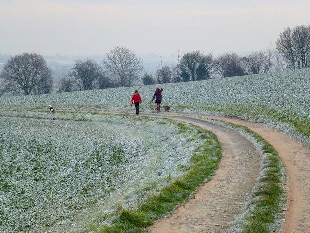 Frosty walk on Bryngwyn Hill