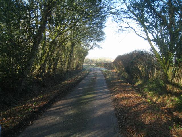 Poland Lane