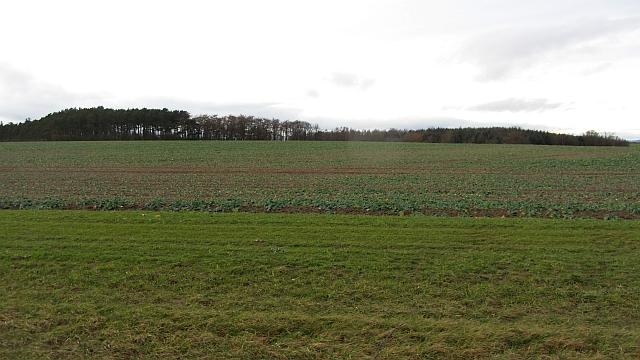 Arable land, Ancroft