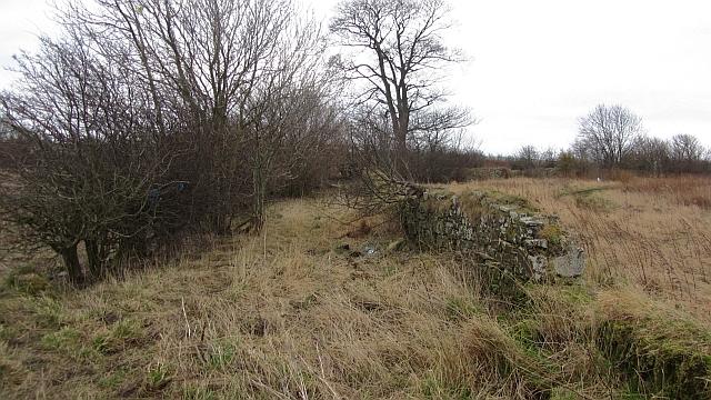 Overgrown roadway, Edmonstone
