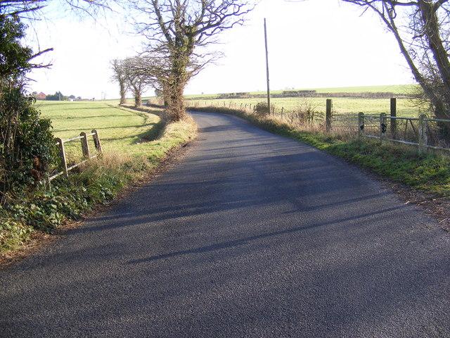 Christmas Lane