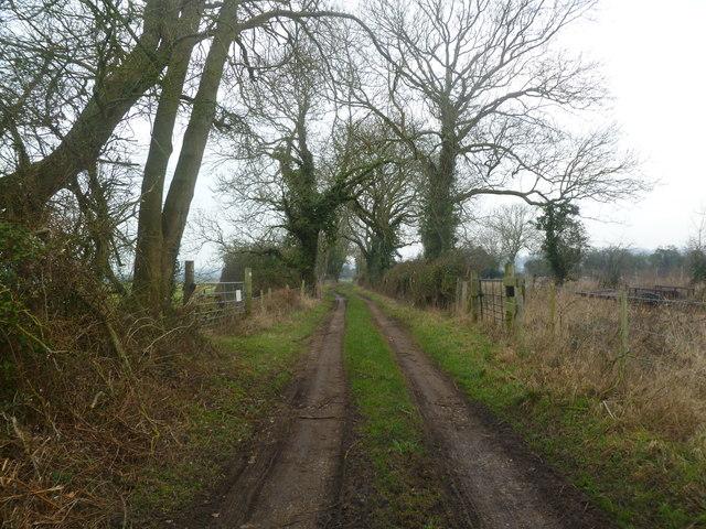 Unnamed bridleway