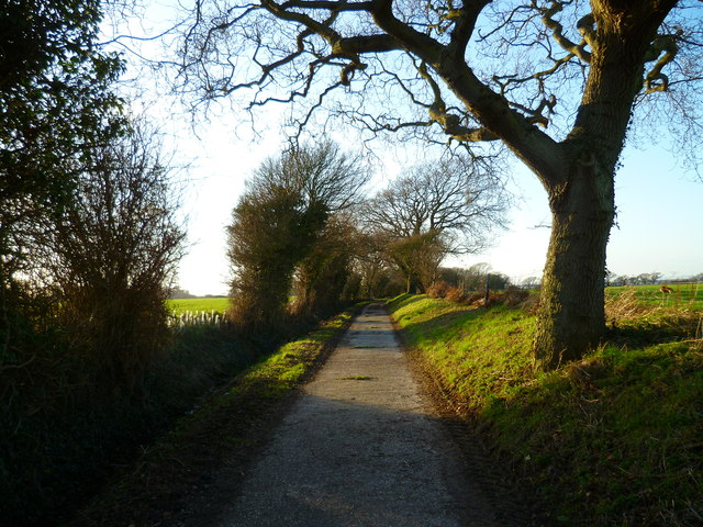 Footpath to the estuary at Itchenor