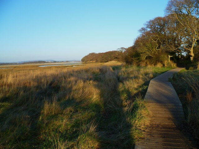 Boardwalk on the east side of Chichester Channel