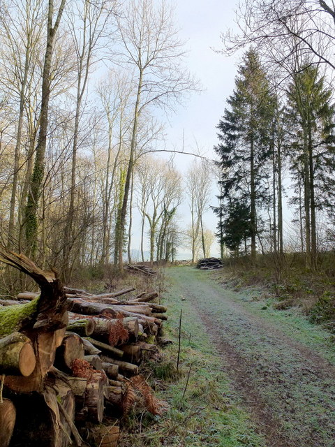 The Herefordshire Trail