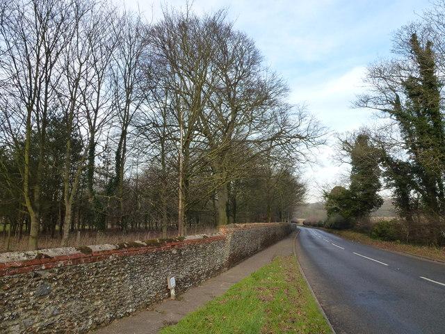 Near Hillington Hall, King's Lynn