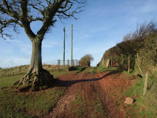 Track, Staddon Gate