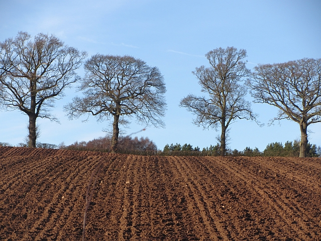 Ploughed field, Ormiston