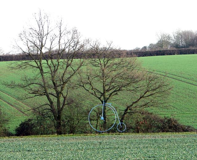 A Penny Farthing in fields near Okenhill Hall