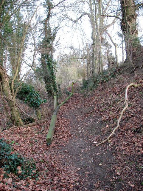 Narrow path to Rendham Barnes