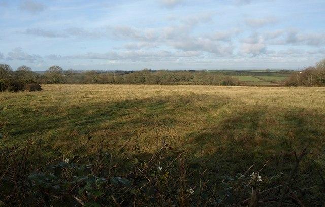 Staddon Moor