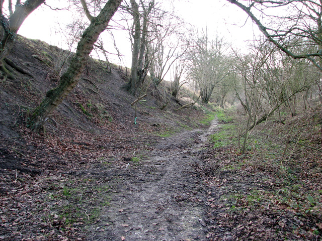 Path to West Mead, Rendham