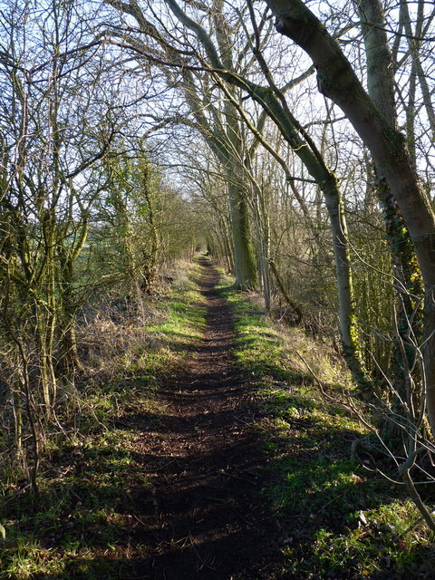 The old canal towpath