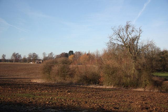 Farmland off Saversick Lane