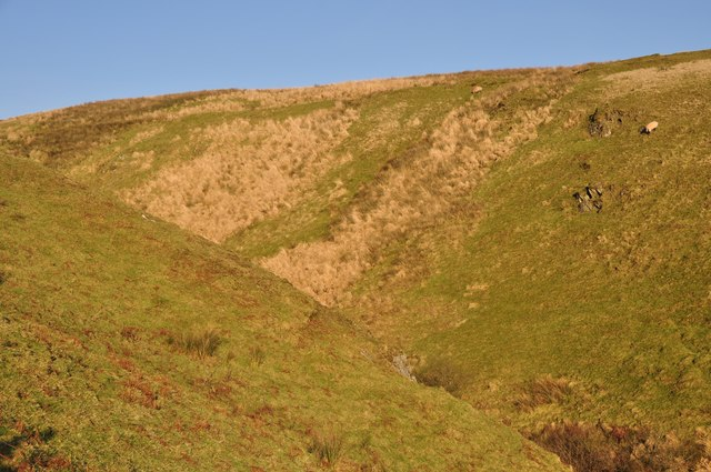 Exmoor : Hillside Moorland