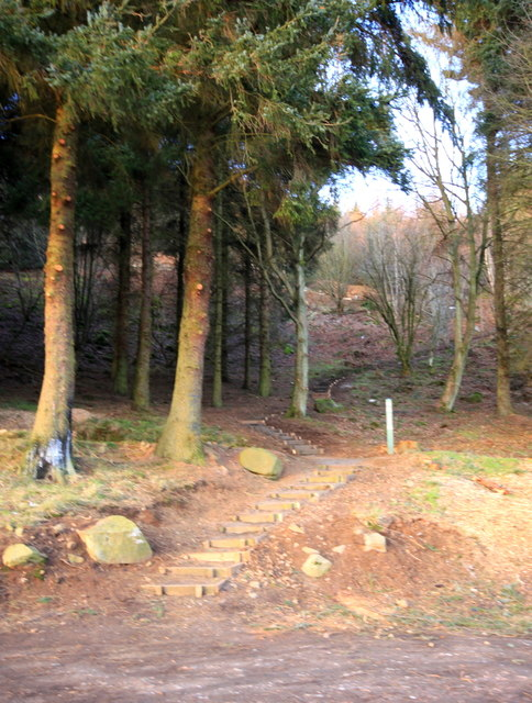 Footpath to Benarty Hill