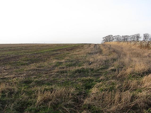 Arable land, Blakelaw