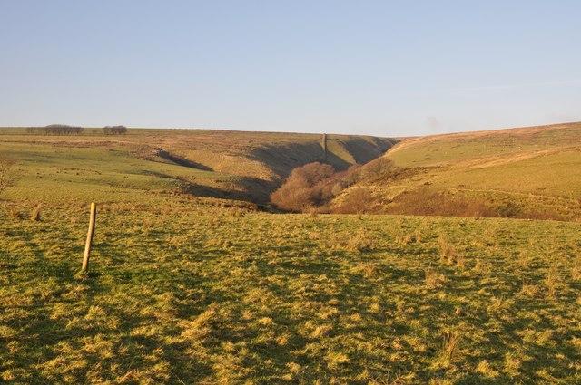 Exmoor : Moorland at Tangs Bottom