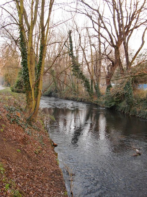 The River Crane, Crane Park, January
