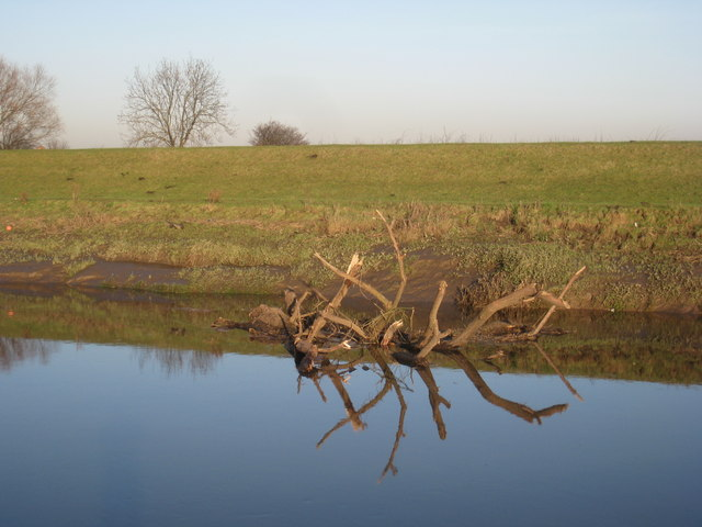 Floating timber on the River Don