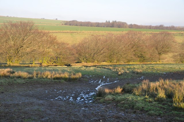 Exmoor : Muddy Footpath