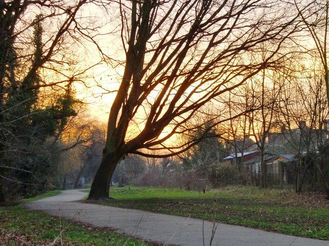 Crane Park at sunset, January