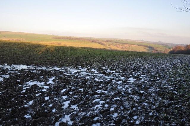 Exmoor : Muddy Field