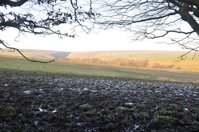 Exmoor : Muddy Field & Scenery