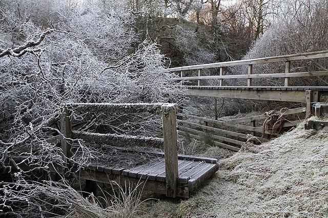 A footbridge at Hawkshaw Cleuch