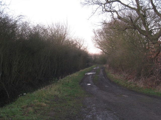 Track off Marsh Hill Lane