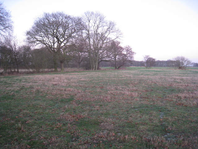 Wooded carr land