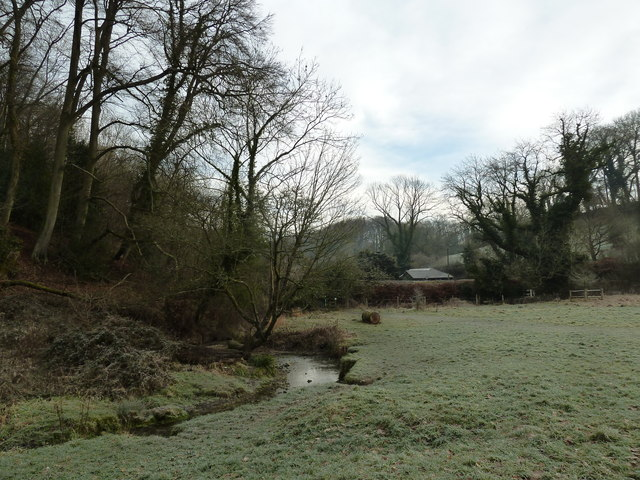 A chilly Oakhanger Stream