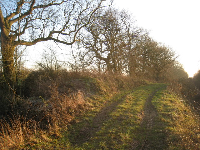 The lane to Fosterhouses