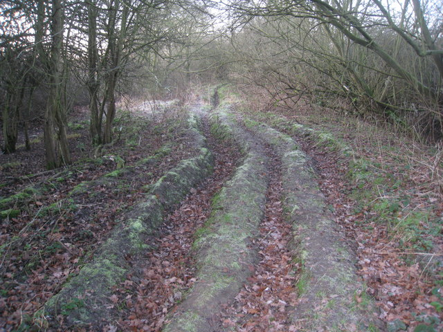 Deeply rutted track