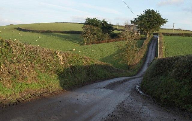 Lane near Riddistone