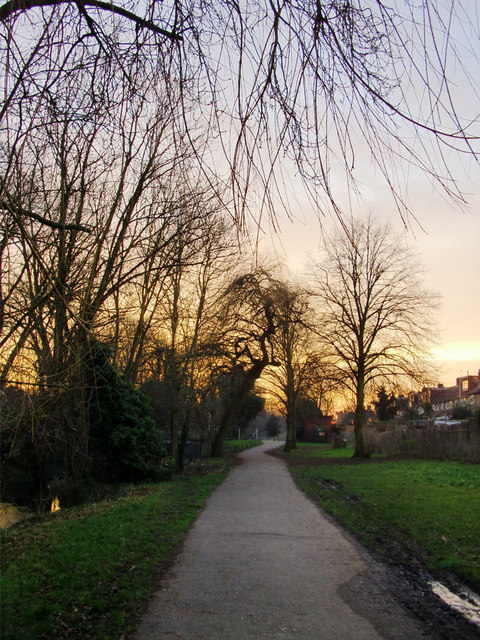 Crane Park at dusk, January