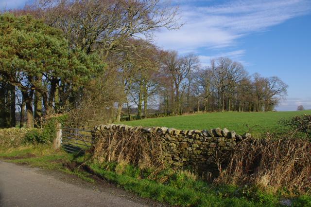 Swarthdale Road
