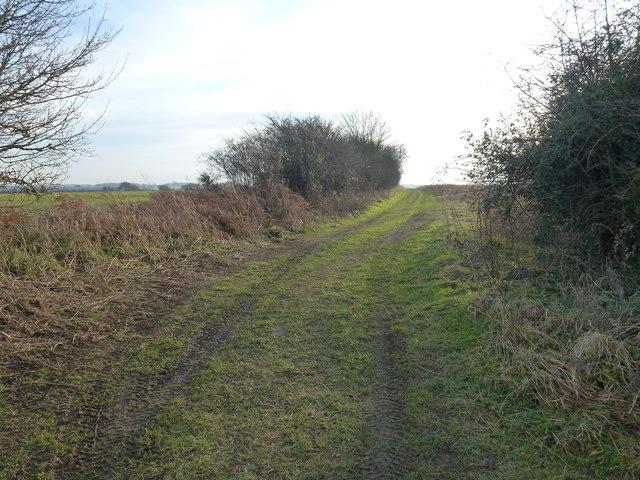 Public bridleway near Great Massingham