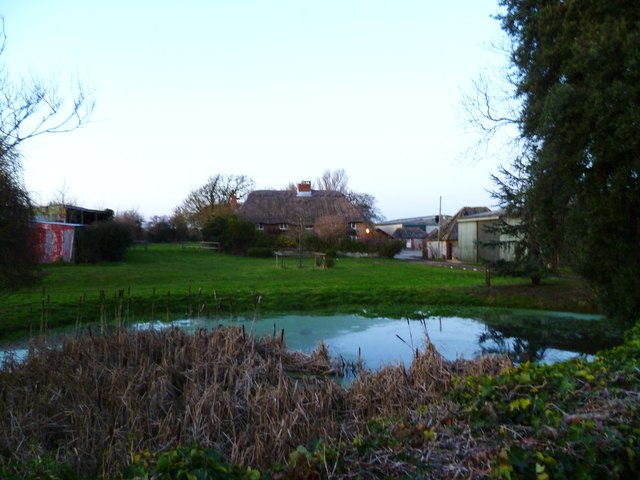 Pond by the A286 at Birdham
