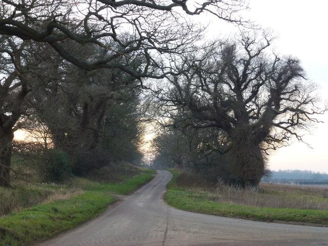 Lane to Gayton Thorpe, Norfolk