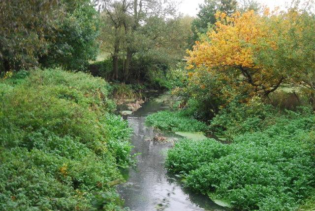 Blackwater River, upstream