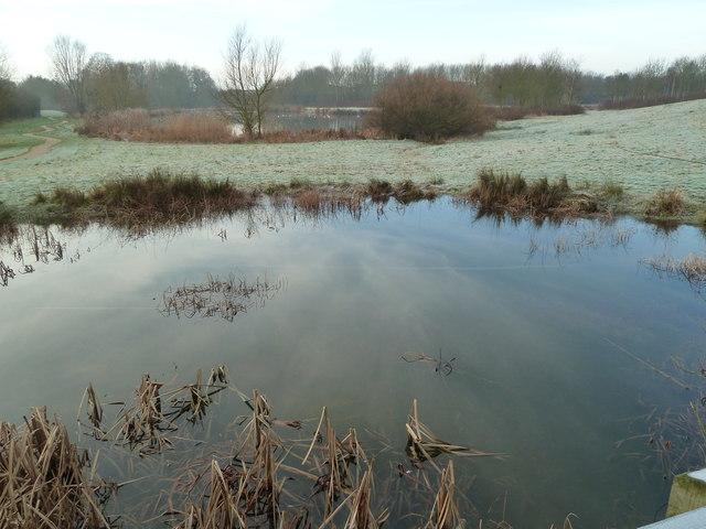 Pond and lake